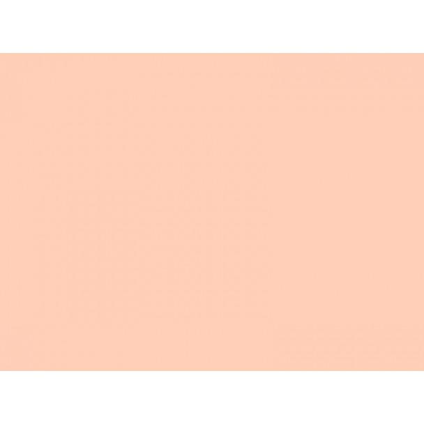 Rosco E-Colour+ Nr 152