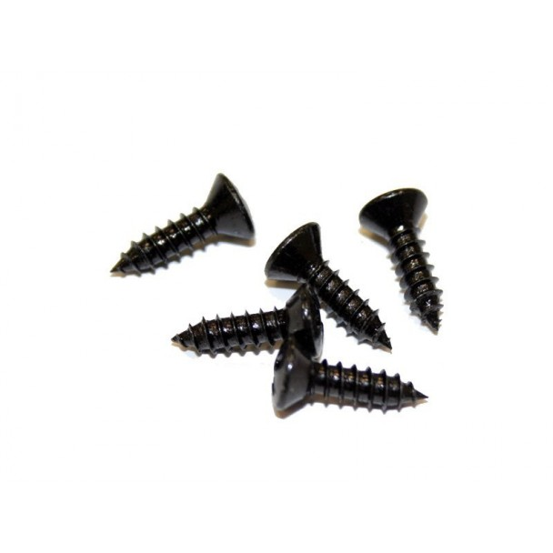 Schaller LK-screw 6029
