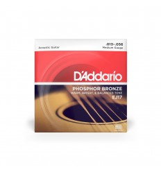 D-Addario EJ17